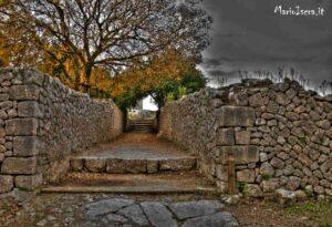 viale romano
